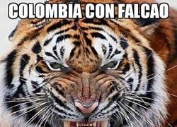 Enlace a Colombia con y sin Falcao