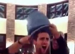 Enlace a GIF: Nole también uniéndose a la causa con el Ice Bucket Challenge