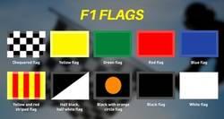 Enlace a Demuestra tus conocimientos de F1 y di que significa cada bandera