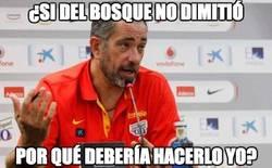 Enlace a Si Del Bosque no dimitió...