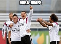 Enlace a Mira, James
