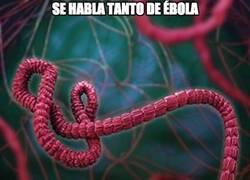 Enlace a Se habla tanto del ébola que...