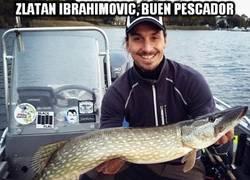 Enlace a Zlatan Ibrahimovic, buen pescador