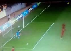 Enlace a GIF: La mala suerte en el gol en propia de España
