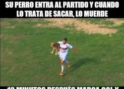 Enlace a Luis Suárez reencarnado en un perro