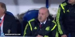 Enlace a GIF: Tu reacción cuando por fin alineas a un 11 que juega bien al fútbol