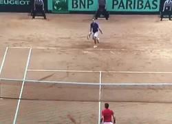 Enlace a GIF: Con este punto, Federer gana el único título importante que le faltaba en su colección