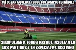 Enlace a Así se van a quedar todos los campos españoles