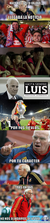 442666 - ¡Nunca te olvidamos Don Luis! #DEP