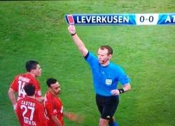 Enlace a Roja al Leverkusen
