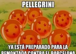 Enlace a Pellegrini tiene todo a punto