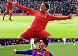 Enlace a Luis Suárez ya esta listo para el partido homenaje a Steven Gerrard el próximo domingo
