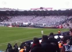 Enlace a GIF: Gran efecto colorido de la afición del Girondins en Francia