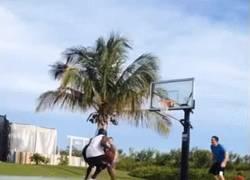 Enlace a GIF: A los 52 años, Michael Jordan sigue a lo suyo