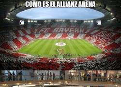 Enlace a Resbalones everywhere en el Allianz Arena