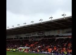 Enlace a GIF: Lo que faltaba por ver: Un aficionado del Blackpool