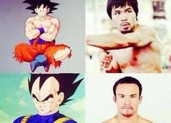 Enlace a Si los boxeadores fueran personajes de Dragon Ball