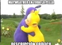 Enlace a La pelea de Mayweather