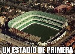 Enlace a ¡Felicidades al Real Betis! ¡Ya son de 1ª división!