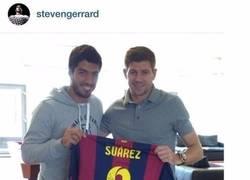 Enlace a Gerrard felicita a Luis Suárez