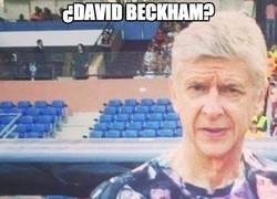 Enlace a Wenger, icono de estilo