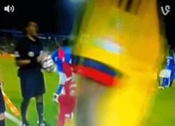 Enlace a GIF: El niño que bromeó expulsando a los árbitros del Brasil vs Colombia