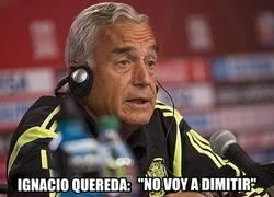 Enlace a Lo de dimitir no va con los seleccionadores españoles