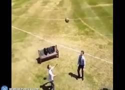 Enlace a GIF: Llevar a otro nivel el reto de encestar el balón
