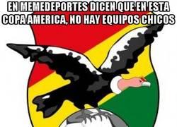 Enlace a En Memedeportes dicen que en esta Copa América