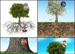 Enlace a Sí los equipos de futbol fueran árboles