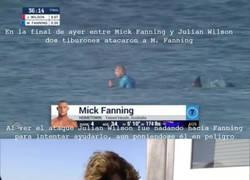 Enlace a Lo que sucedió después del ataque de tiburón