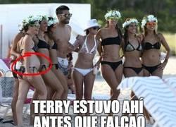 Enlace a Terry marca territorio