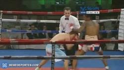 Enlace a GIF: Polémico knockout. No le da ningún golpe y cae fulminado