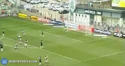 Enlace a GIF: Golazo al estilo Roberto Carlos en el Brasileirao