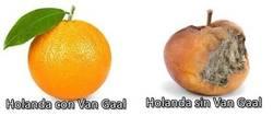 Enlace a La naranja ya no es lo que era