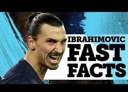 Enlace a DIOS: Zlatan Ibrahimovic Facts. Y es por esto que es único