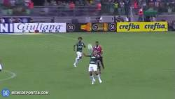 Enlace a GIF: Rogerio Ceni falla dos veces y el mismo jugador le marca las dos veces