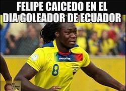 Enlace a Felipe Caicedo y sus profesiones