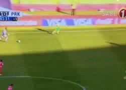 Enlace a GIF: Este portero de Sudáfrica suele ver partidos de Neuer