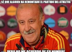 Enlace a Del Bosque sigue a su rollo