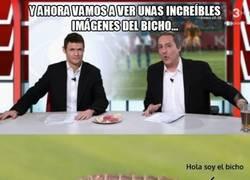 Enlace a Los del Bar Manolos y Rajoy hablan del Bicho