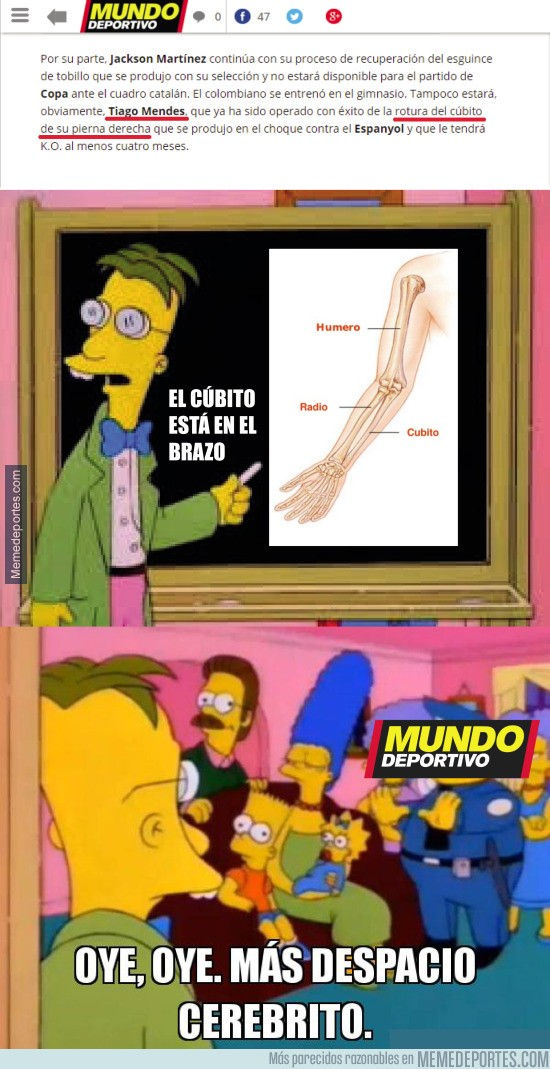 746591 - ¡Hoy, con Mundo Deportivo, llévate un suplemento sobre anatomía básica!