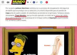 Enlace a ¡Hoy, con Mundo Deportivo, llévate un suplemento sobre anatomía básica!