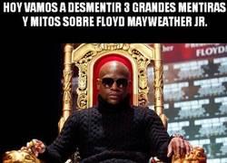 Enlace a Cazadores de mitos - Floyd Mayweather Jr.