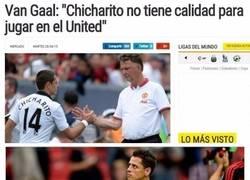 Enlace a Chicharito viendo la temporada de Van Gaal