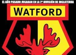Enlace a Enorme temporada del Watford hasta el momento