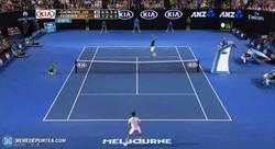Enlace a GIF: El genial punto de Roger Federer ante Novak Djokovic