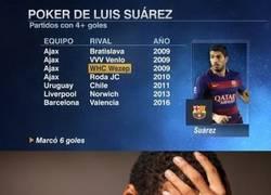 Enlace a Suárez, el rey del póker