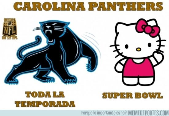 799406 - Carolina Pathers en la Super Bowl