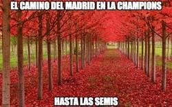 Enlace a El camino del Madrid en la Champions hasta las semis